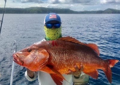 Large Red Snapper