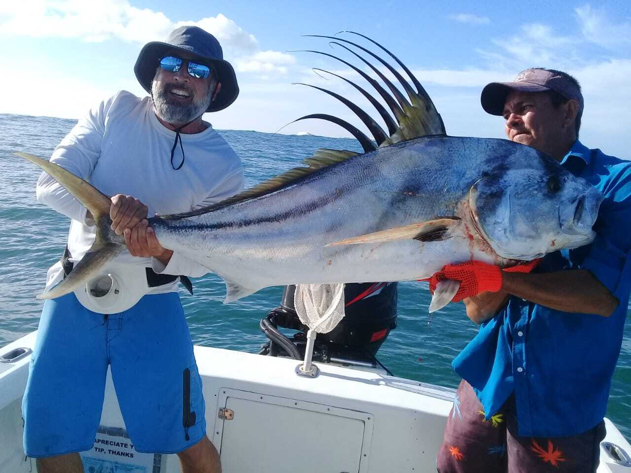 Large Rooster Fish