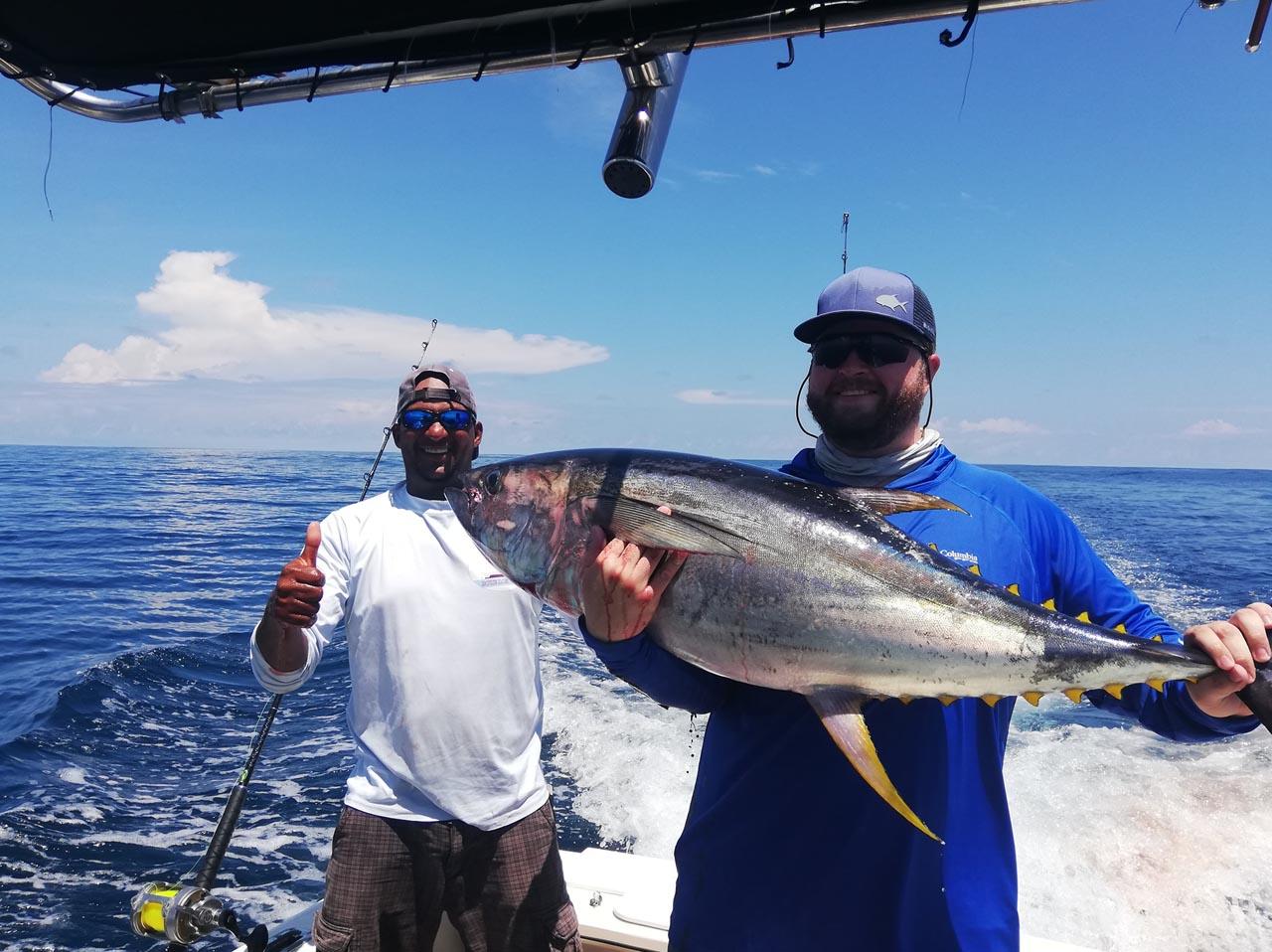 Papagayo Tuna Fish