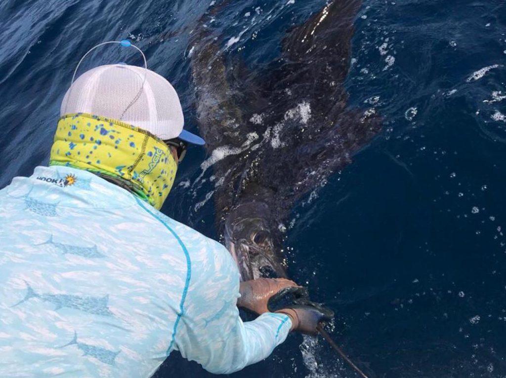 Ocotal fishing for Sailfish